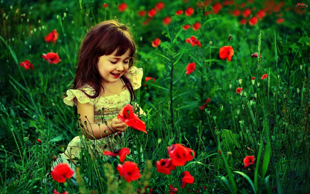 cute_baby_girl_with_red_flowers_hd_wallpaper__cute_little_babies-1024x640